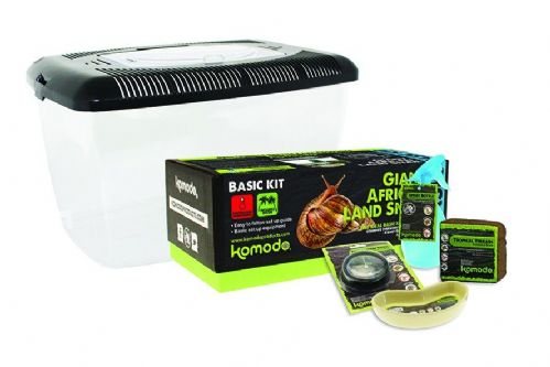 Giant African Land Snail Kit